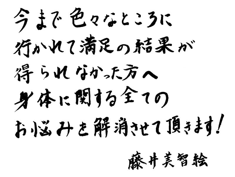 Mes_Fujii